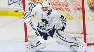 Hockey - Plymouth Whalers OHL